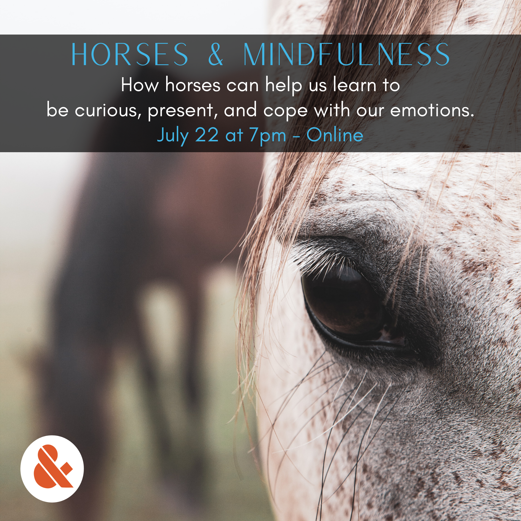 graphic for horses & mindfulness